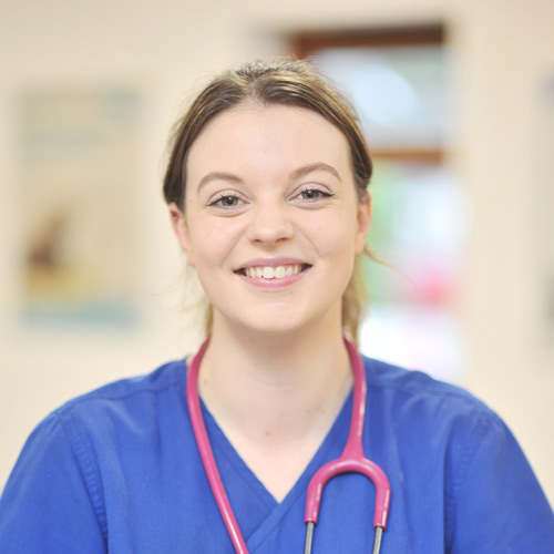 heathside-vets-vet-in-southampton-team-staff-ellie-houghton