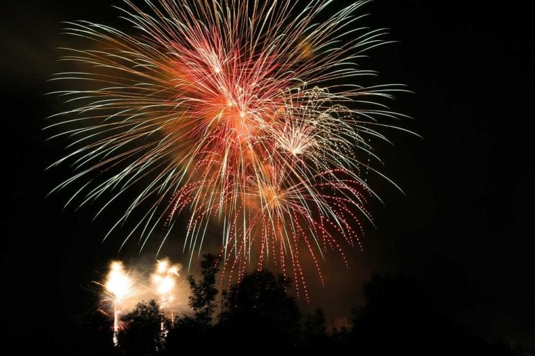 Fireworks and pets | Heathside Vet