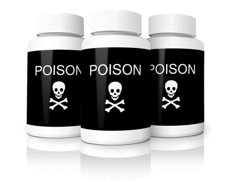 Pets and poisons - what is harmful to your best friend | Heathside Vet